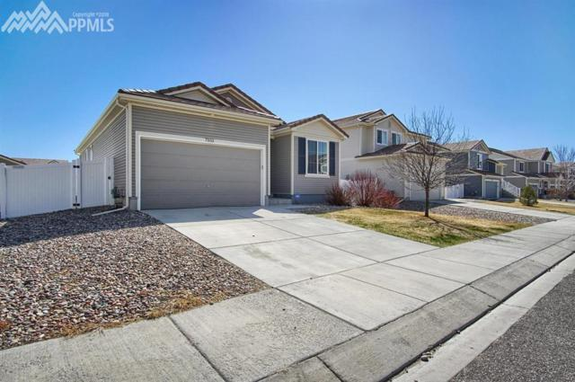 7933 Bonfire Trail, Fountain, CO 80817 (#8196246) :: Action Team Realty