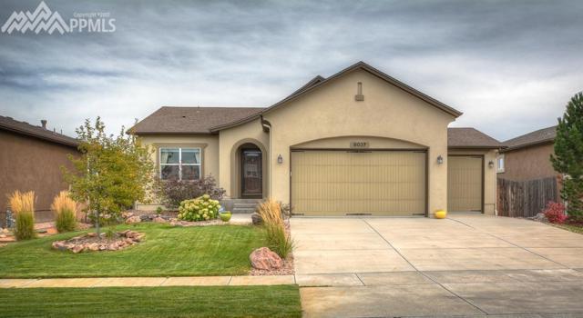 8037 Mount Huron Trail, Colorado Springs, CO 80924 (#8196448) :: 8z Real Estate