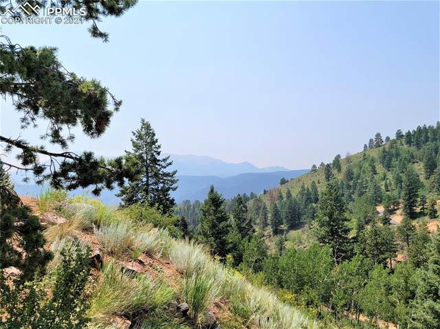9455 Canyon Drive, Woodland Park, CO 80863 (#8196961) :: Tommy Daly Home Team
