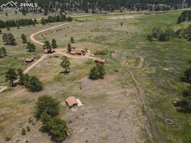 1410 County Road 90 Road, Lake George, CO 80827 (#8199896) :: Fisk Team, eXp Realty