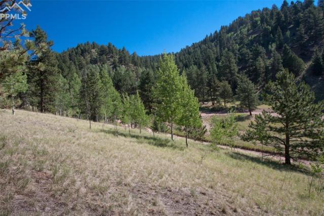 9680 Canyon Drive, Green Mountain Falls, CO 80819 (#8201124) :: The Treasure Davis Team