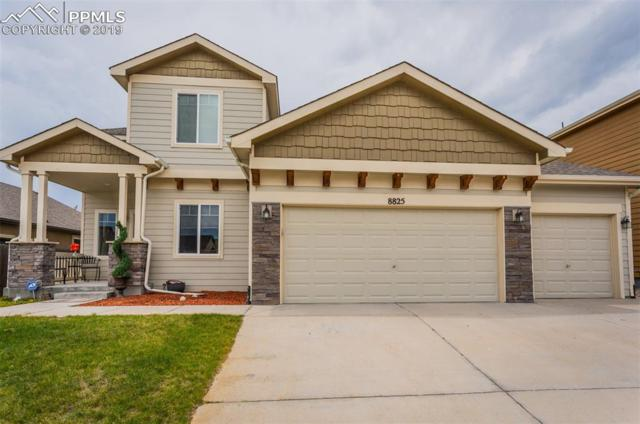 8825 Canary Drive, Colorado Springs, CO 80908 (#8202135) :: Tommy Daly Home Team