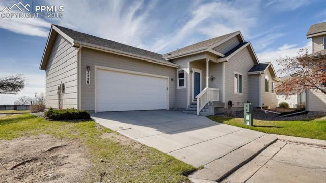 7229 Maybeck View, Peyton, CO 80831 (#8203942) :: Harling Real Estate