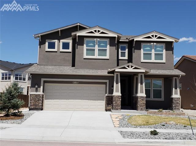 4118 Notch Trail, Colorado Springs, CO 80924 (#8206210) :: 8z Real Estate