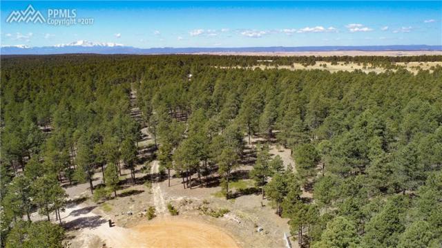 10365 Elizabeth Way, Colorado Springs, CO 80908 (#8207015) :: 8z Real Estate