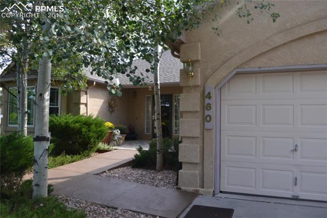 460 W Lone Horn Point, Monument, CO 80132 (#8207549) :: 8z Real Estate