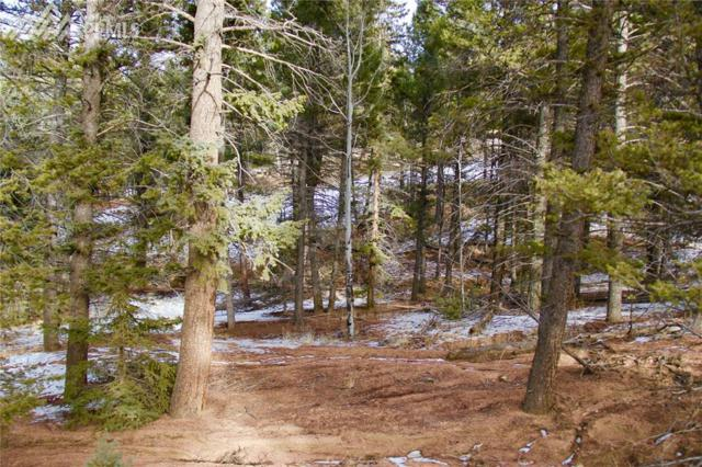 365 Paint Pony Lane, Florissant, CO 80816 (#8209214) :: The Treasure Davis Team