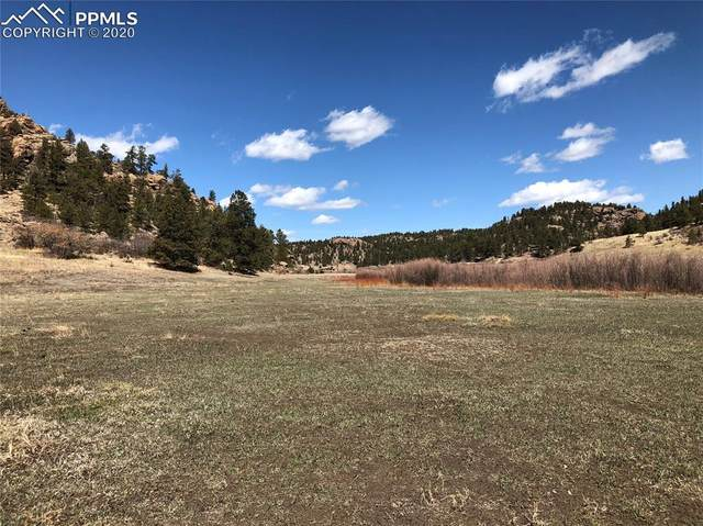 386 Ranch View Drive, Florissant, CO 80816 (#8214671) :: The Treasure Davis Team