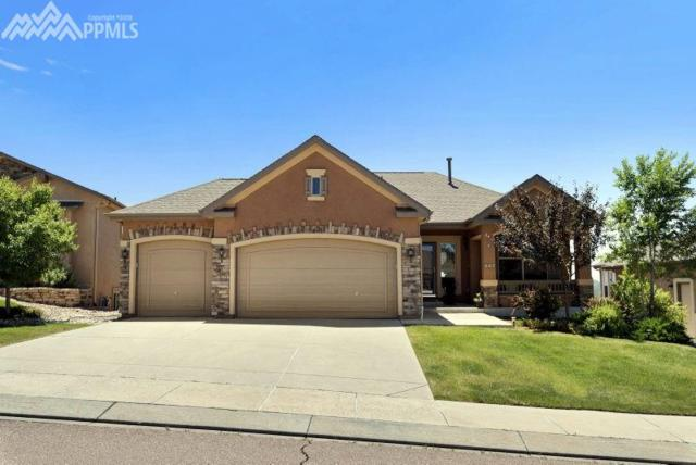 447 Whistler Creek Court, Monument, CO 80132 (#8215319) :: Jason Daniels & Associates at RE/MAX Millennium