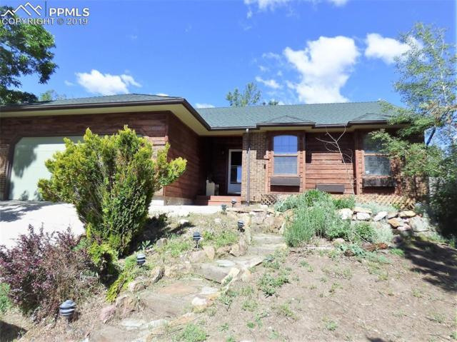 6020 Sailing Court, Colorado Springs, CO 80918 (#8218667) :: Tommy Daly Home Team