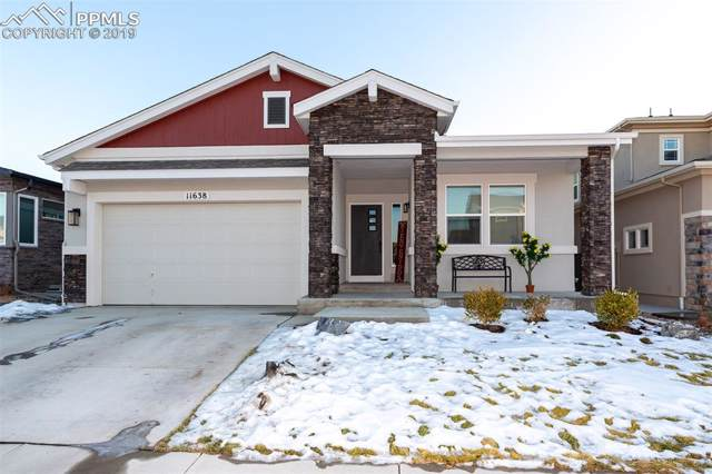 11638 Spectacular Bid Circle, Colorado Springs, CO 80921 (#8225777) :: Action Team Realty