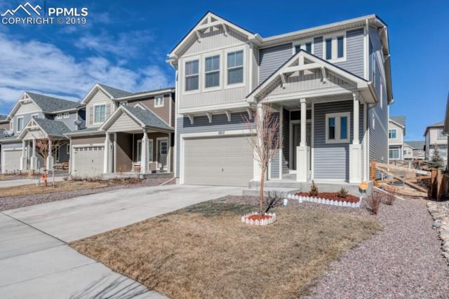 6812 Mineral Belt Drive, Colorado Springs, CO 80927 (#8232786) :: Colorado Home Finder Realty