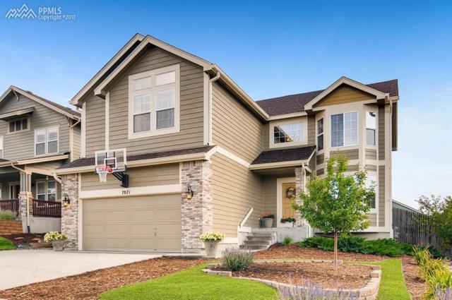 7071 Sapling Place, Colorado Springs, CO 80922 (#8235804) :: Action Team Realty