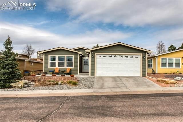 4419 Gray Fox Heights, Colorado Springs, CO 80922 (#8237285) :: Hudson Stonegate Team