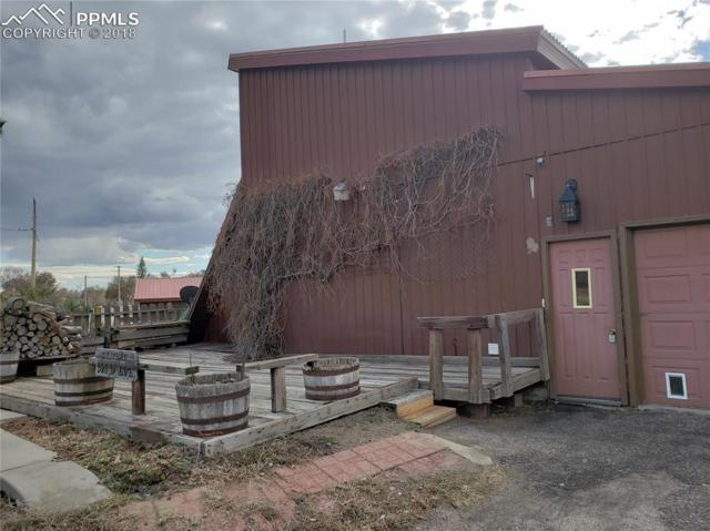 921 D Avenue, Limon, CO 80828 (#8239866) :: Jason Daniels & Associates at RE/MAX Millennium