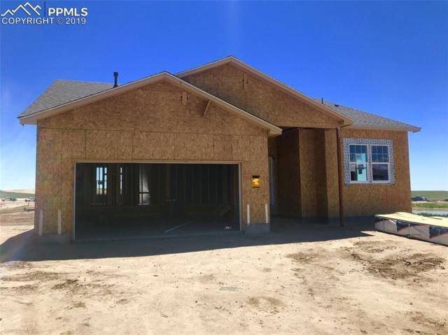 8267 Diorite Drive, Colorado Springs, CO 80838 (#8240772) :: Action Team Realty