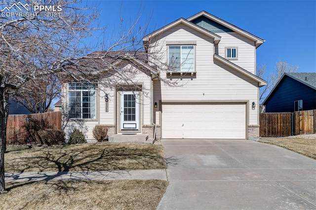 4130 Coolwater Drive, Colorado Springs, CO 80916 (#8241259) :: Action Team Realty