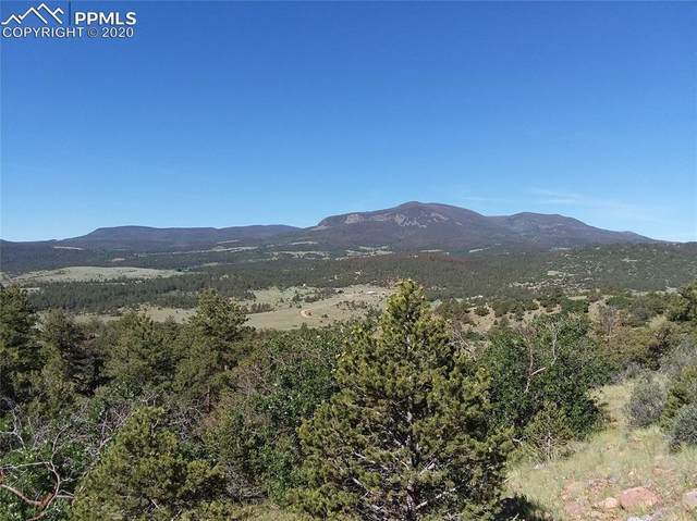 285 Rosebush Road, Canon City, CO 81212 (#8243110) :: Finch & Gable Real Estate Co.