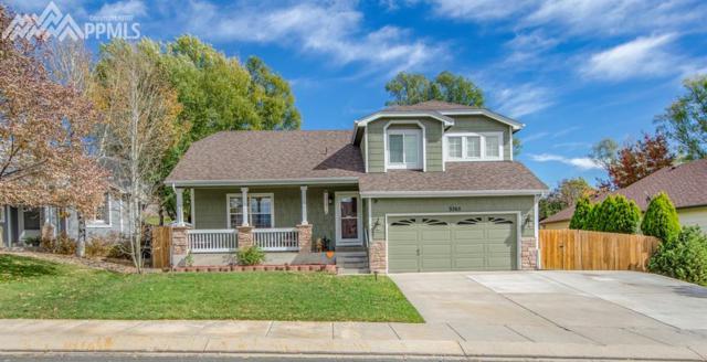 3265 Cowhand Drive, Colorado Springs, CO 80922 (#8243479) :: Colorado Home Finder Realty