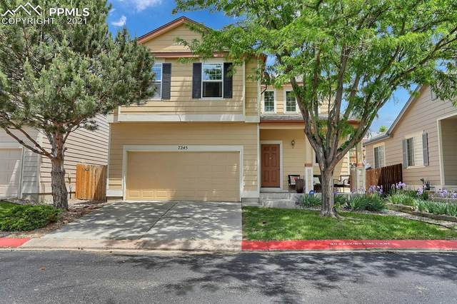 7245 Mount Higgins Heights, Colorado Springs, CO 80922 (#8244122) :: Tommy Daly Home Team