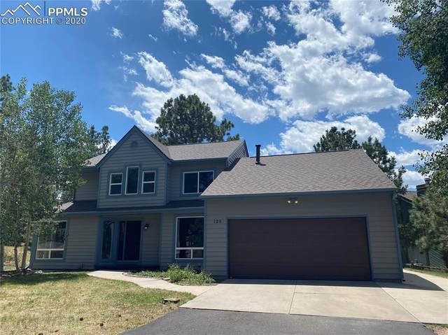 125 Winding Meadow Way, Monument, CO 80132 (#8245949) :: 8z Real Estate
