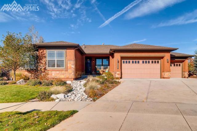 13255 Cedarville Way, Colorado Springs, CO 80921 (#8246675) :: The Treasure Davis Team