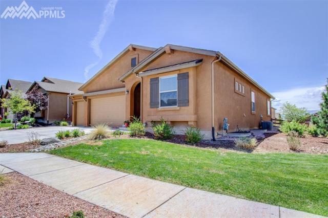 2417 Fieldbrook Court, Colorado Springs, CO 80921 (#8247117) :: 8z Real Estate
