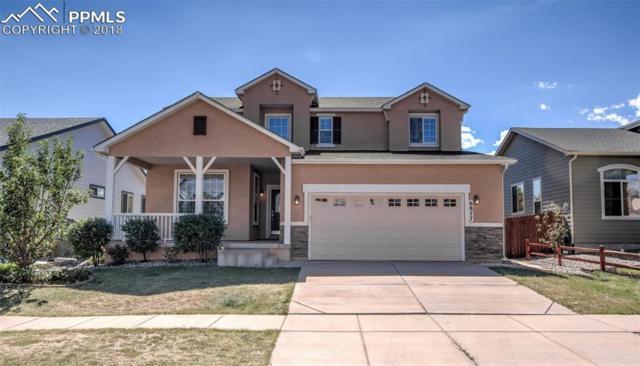 6877 Cool Spring Way, Colorado Springs, CO 80923 (#8253690) :: The Peak Properties Group