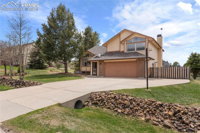 860 Wuthering Heights, Colorado Springs, CO 80921 (#8254831) :: Action Team Realty