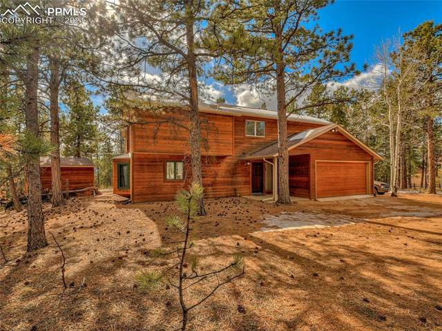 155 High View Circle, Woodland Park, CO 80863 (#8255262) :: 8z Real Estate