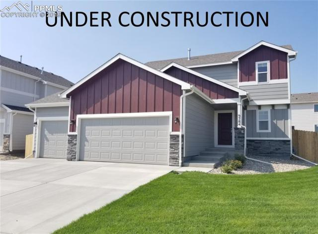 6142 Cider Mill Place, Colorado Springs, CO 80925 (#8255421) :: The Treasure Davis Team