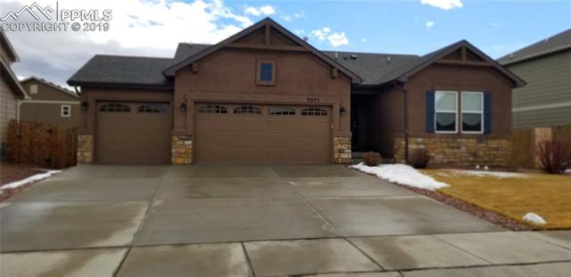 9579 Desert Poppy Lane, Colorado Springs, CO 80925 (#8255834) :: CENTURY 21 Curbow Realty