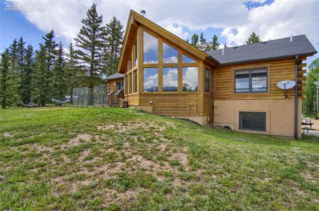 168 Dani Place, Divide, CO 80814 (#8256606) :: 8z Real Estate