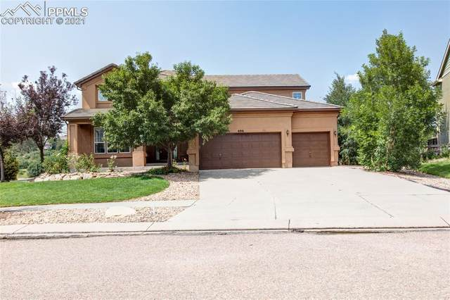 696 Coyote Willow Drive, Colorado Springs, CO 80921 (#8260030) :: Tommy Daly Home Team