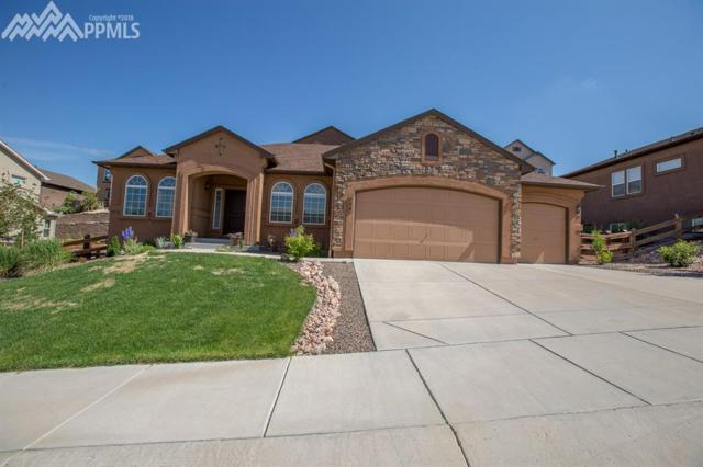 244 Reading Way, Monument, CO 80132 (#8260665) :: 8z Real Estate