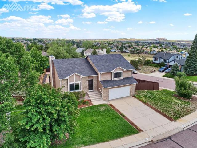 8015 Trefoil Court, Colorado Springs, CO 80920 (#8261239) :: Fisk Team, RE/MAX Properties, Inc.