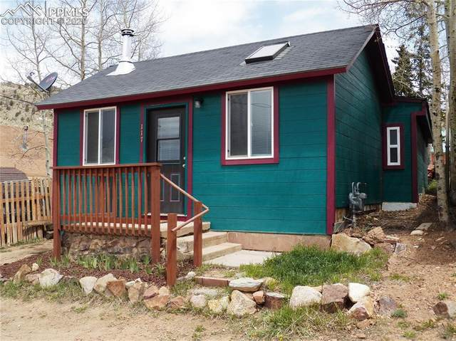 117 Spicer Avenue, Victor, CO 80860 (#8264828) :: 8z Real Estate