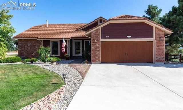 295 Desert Inn Way, Colorado Springs, CO 80921 (#8265652) :: The Artisan Group at Keller Williams Premier Realty