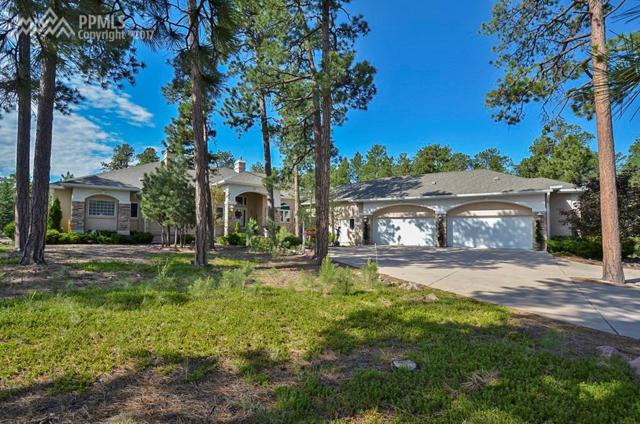 1315 Boldmere Court, Monument, CO 80132 (#8265763) :: 8z Real Estate