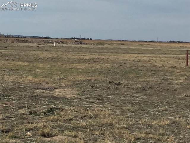 14290 S Lauppe Road, Yoder, CO 80864 (#8271467) :: 8z Real Estate