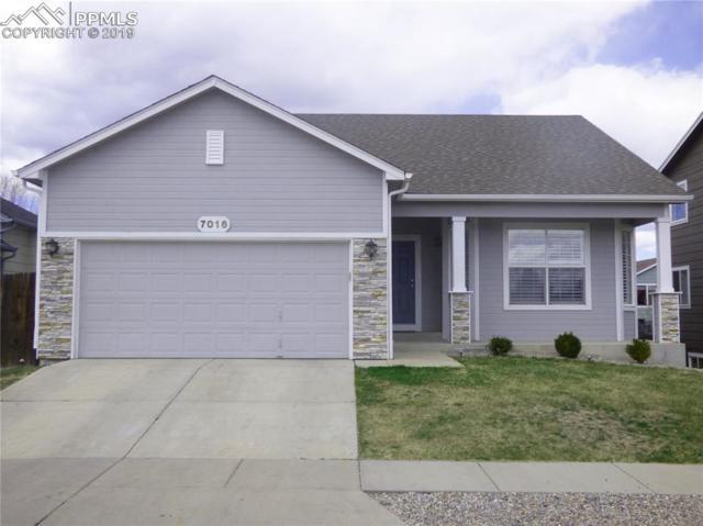 7016 Prairie Wind Drive, Colorado Springs, CO 80923 (#8272477) :: Perfect Properties powered by HomeTrackR