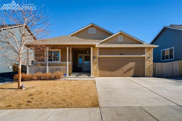 4621 Dancing Light Way, Colorado Springs, CO 80911 (#8274437) :: 8z Real Estate