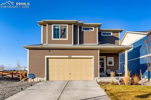 7238 Fauna Glen Drive, Colorado Springs, CO 80927 (#8274571) :: Venterra Real Estate LLC