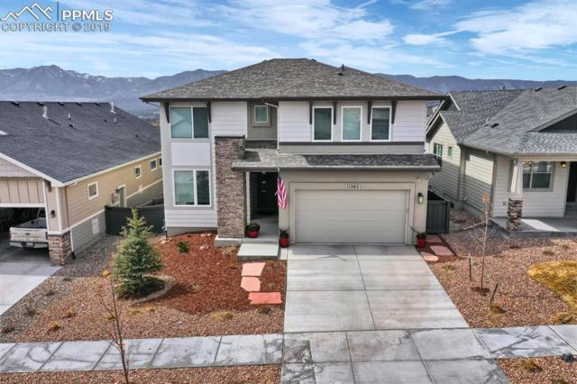 11565 Spectacular Bid Circle, Colorado Springs, CO 80921 (#8276204) :: The Treasure Davis Team