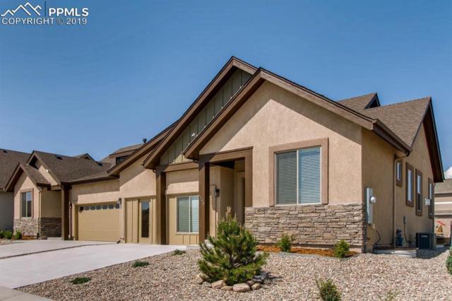 6590 Petaluma Point, Colorado Springs, CO 80923 (#8276724) :: Jason Daniels & Associates at RE/MAX Millennium