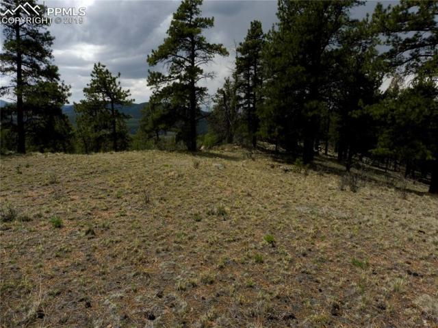 189 Navajo Trail, Florissant, CO 80816 (#8279917) :: The Daniels Team