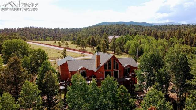 4400 Elk Valley Road, Divide, CO 80814 (#8280383) :: Action Team Realty