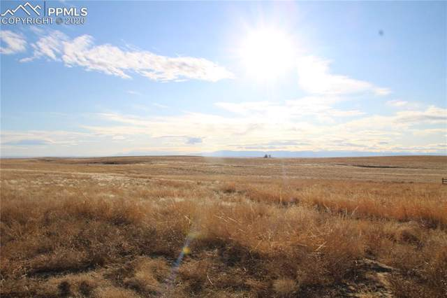 30195 Darroll Road, Yoder, CO 80864 (#8281762) :: The Peak Properties Group