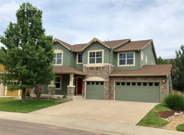 3808 Sunchase Drive, Castle Rock, CO 80109 (#8285039) :: Fisk Team, RE/MAX Properties, Inc.