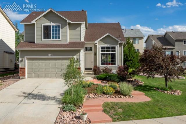 461 Oxbow Drive, Monument, CO 80132 (#8286011) :: Jason Daniels & Associates at RE/MAX Millennium